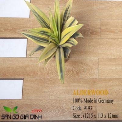 Sàn gỗ Alder 9193 bản nhỏ 12mm