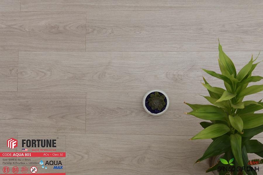 Sàn gỗ Fortune 8mm 801-3
