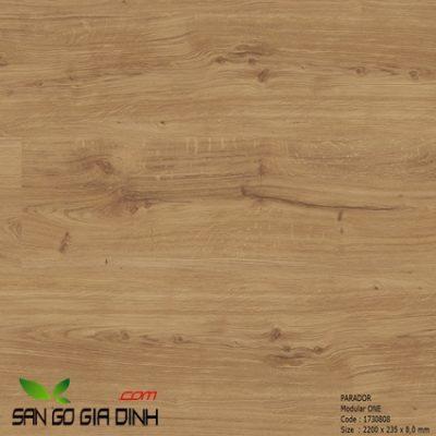 Sàn gỗ Parador Modular ONE mã 1730808