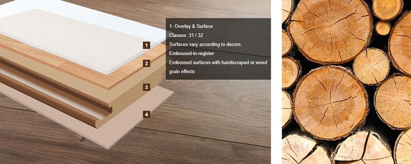Cấu tạo sàn gỗ Egger Đức